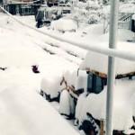 Батуми парализован из-за снежной бури