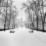 Коммунальщики обратились к жителям Минска за помощью в уборке снега